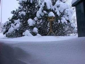 Vinter 2009 i Branderup